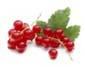 Кулинария и здоровье. Какие продукты лучше для здоровья